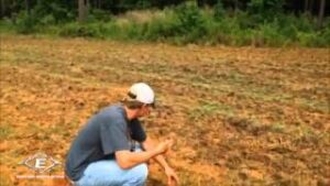 Read more about the article Food Plot'sTrained Assassins – YouTube