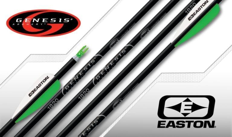 Easton Genesis Arrow Black NASP Arrows