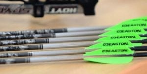 Read more about the article 3 THINGS TO CONSIDER WHEN CHOOSING THE BEST ANTELOPE ARROW