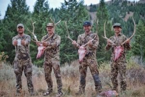 Read more about the article Archery Elk Hunting – What Else Is There?