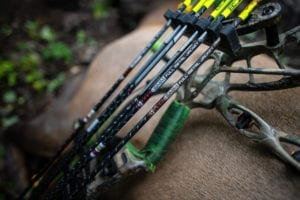Bowhunting Elk: 30 year friend ship
