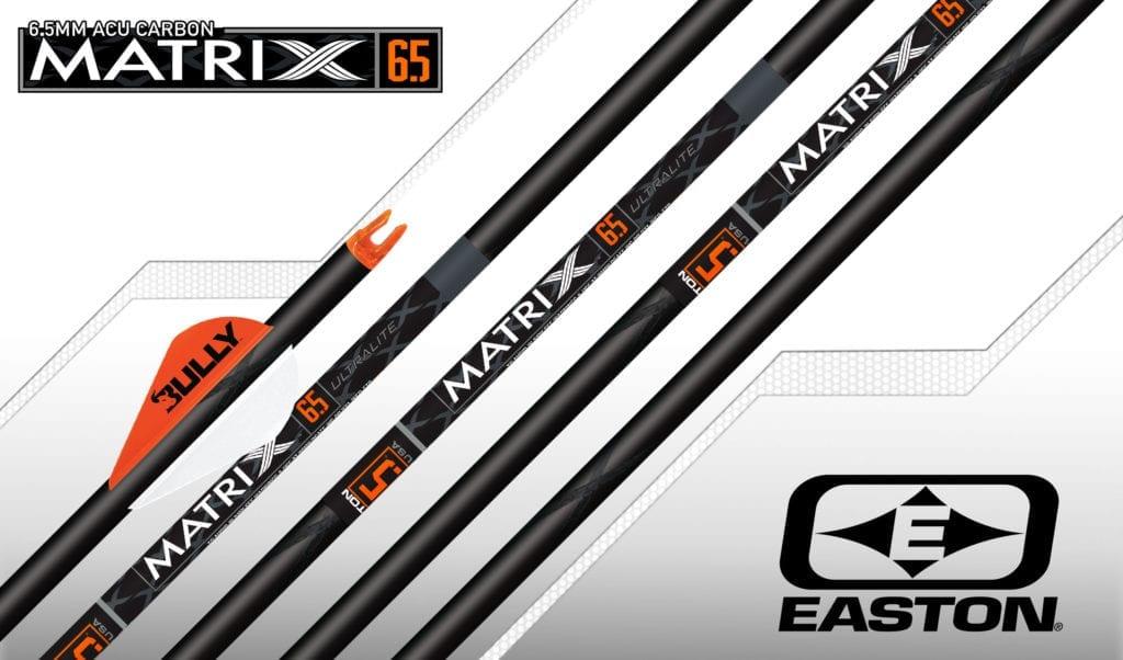 Easton Axis 340 Arrows With Blazer Vanes Custom Made Set of 6