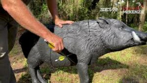 Read more about the article Shot Placement On Hogs – YouTube