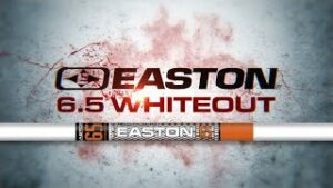 Read more about the article Easton 6.5 Whiteout Arrows – YouTube