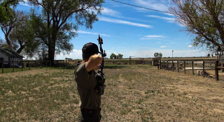 Long and Short Range Shooting For Bowhunters