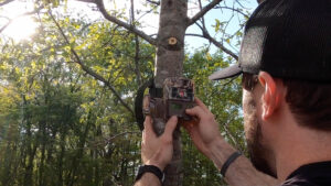 How To Place Trail Cameras on Food Plots