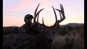 Read more about the article BTF – Record Buck Taken by Johnny Brown with Easton FMJ Arrows – YouTube