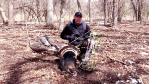 Read more about the article Perfect Turkey Arrow Part 2 – YouTube