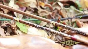 Read more about the article AXIS Traditional Arrows – YouTube